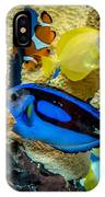Colorful Fish IPhone Case