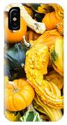 Colorful Gourds  IPhone Case