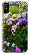 Colorful Hydrangea At The Gate. Giethoorn. Netherlands IPhone Case