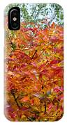 Colorful Leaves In Autumn IPhone Case
