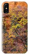Colorful Leaves On A Tree IPhone Case