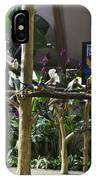 Colorful Macaws And Other Small Birds On Trees At An Exhibit IPhone Case