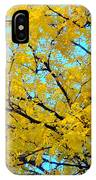 Colors Of Fall 1 IPhone Case