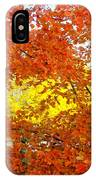 Colors Of Fall 2 IPhone Case