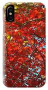 Colors Of Fall 3 IPhone Case