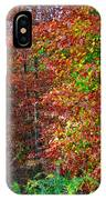 Colors Of Fall 4 IPhone Case