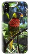 Colours IPhone Case