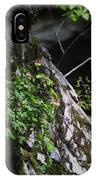 Columbine Flowers On River Rock IPhone Case