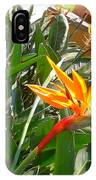 Combination Of Yellow-orange And Red Flower   IPhone Case