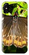 Common Birdwing Butterfly IPhone Case