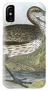 Common Curlew IPhone Case