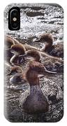 Common Merganser With Chicks IPhone Case