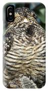 Common Nighthawk Napping IPhone Case