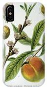 Common Peace Persica Vulgaris IPhone Case