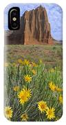 Common Sunflowers And  Temple Of The Sun IPhone Case by Tim Fitzharris