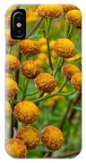 Common Tansy IPhone Case