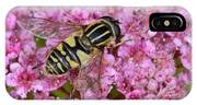 Common Tiger Hoverfly IPhone X Case