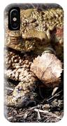 Common Toads IPhone Case