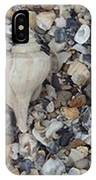 Conch Among A Sea Of Shells IPhone Case