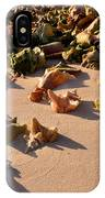 Conch Collection IPhone Case