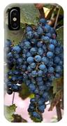 Concord Grapes IPhone Case