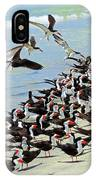 Congregating Skimmers IPhone Case