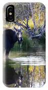 Cool Fall Air IPhone Case