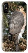 Coopers Hawk In Predator Mode IPhone Case