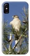 Coopers Hawk In Tree IPhone Case