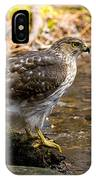 Coopers Hawk Pictures 61 IPhone Case