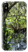 Corkscrew Swamp 3 IPhone Case
