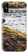 Cormorant - Montague Island - Australia IPhone Case
