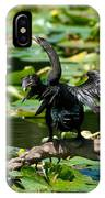 Cormorant And Turtle IPhone Case