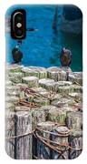 Cormorant Landing IPhone Case
