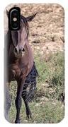 Cortez Colorado Mustangs IPhone Case