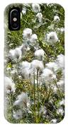 Cotton Grass On Homestead Trail In Homer-ak- IPhone Case