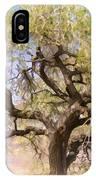 Cottonwood Tree Digital Painting IPhone Case
