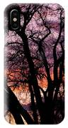 County Sunset IPhone Case