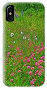 Cow Clover And Ox-eye Daisies On Campobello I IPhone Case
