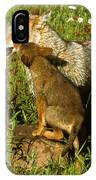 Coyote And Pup IPhone Case