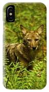 Coyote Of The Woods IPhone Case