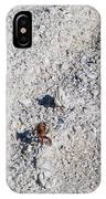 Crab And Footprint IPhone Case