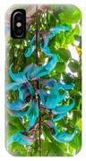 Crab Claw Vine In Kula Maui IPhone Case