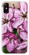 Crabapple Blossom IPhone Case