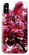 Crabapple Tree Blossoms IPhone Case