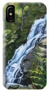 Crabtree Falls IPhone Case