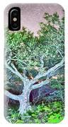 Craggy Gardens North Carolina Blue Ridge Parkway Autumn Nc Sceni IPhone Case