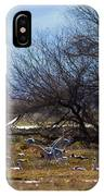 Cranes And Mixed Ducks IPhone Case