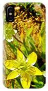Cream Cups In Antelope Valley California Poppy Reserve-california  IPhone Case