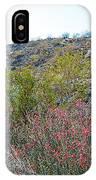 Creosote And Chuparosa On Henderson Trail In Santa Rosa-san Jacinto Nmon-ca IPhone Case